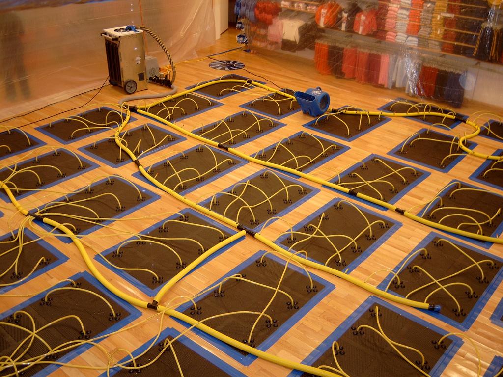 Hardwood floor water damage repair wood floors for Wood floor repair specialist