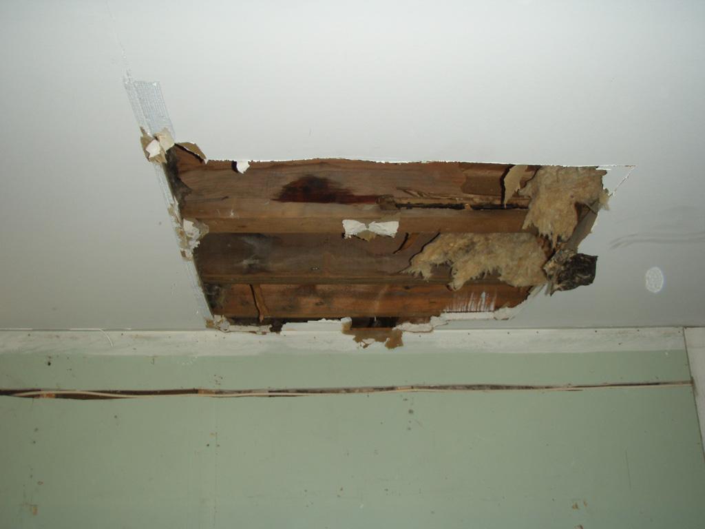 Wet Ceiling Repair #13 Wet Ceiling Repair #13 - Wet Ceiling Photos